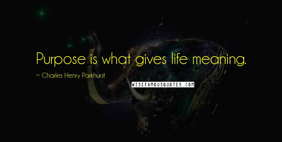Charles Henry Parkhurst quotes: Purpose is what gives life meaning.