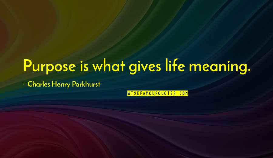 Charles Parkhurst Quotes By Charles Henry Parkhurst: Purpose is what gives life meaning.
