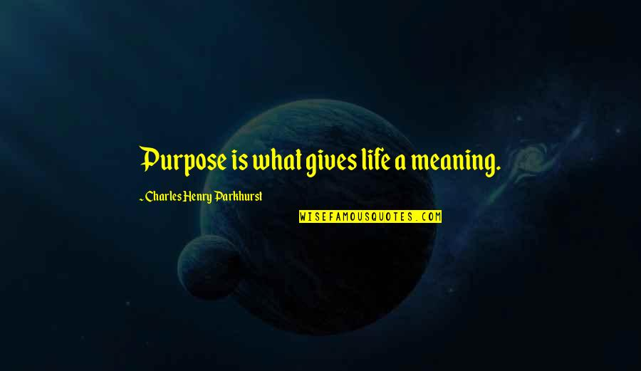 Charles Parkhurst Quotes By Charles Henry Parkhurst: Purpose is what gives life a meaning.