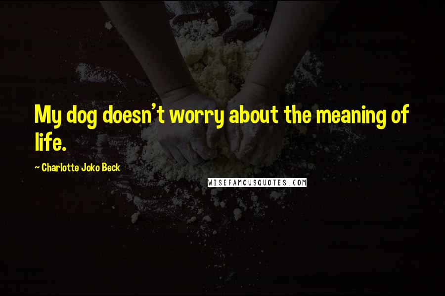 Charlotte Joko Beck quotes: My dog doesn't worry about the meaning of life.