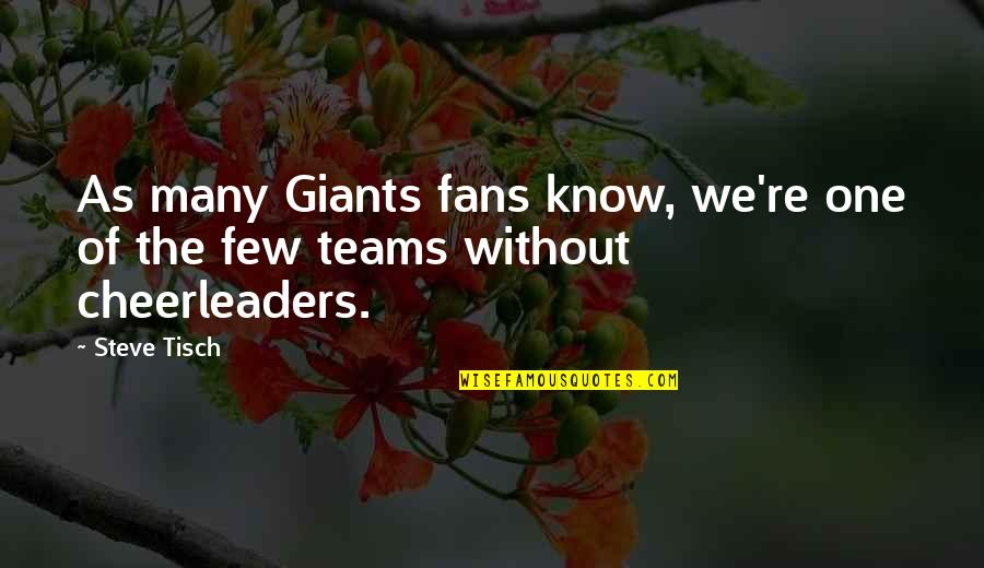 Cheerleaders Quotes By Steve Tisch: As many Giants fans know, we're one of