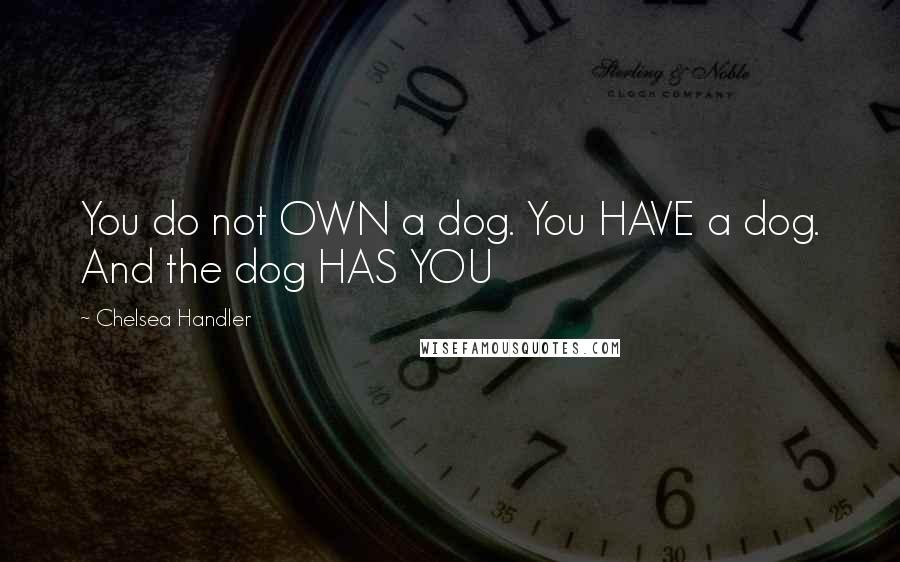 Chelsea Handler quotes: You do not OWN a dog. You HAVE a dog. And the dog HAS YOU