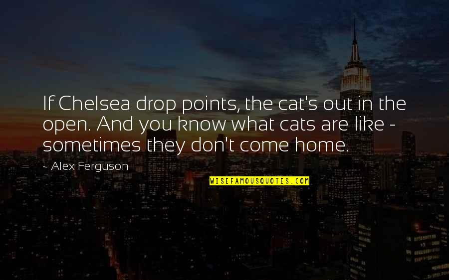 Chelsea's Quotes By Alex Ferguson: If Chelsea drop points, the cat's out in