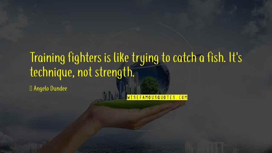 Chemical Warfare Quotes By Angelo Dundee: Training fighters is like trying to catch a