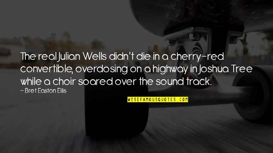 Cherry Tree Quotes By Bret Easton Ellis: The real Julian Wells didn't die in a