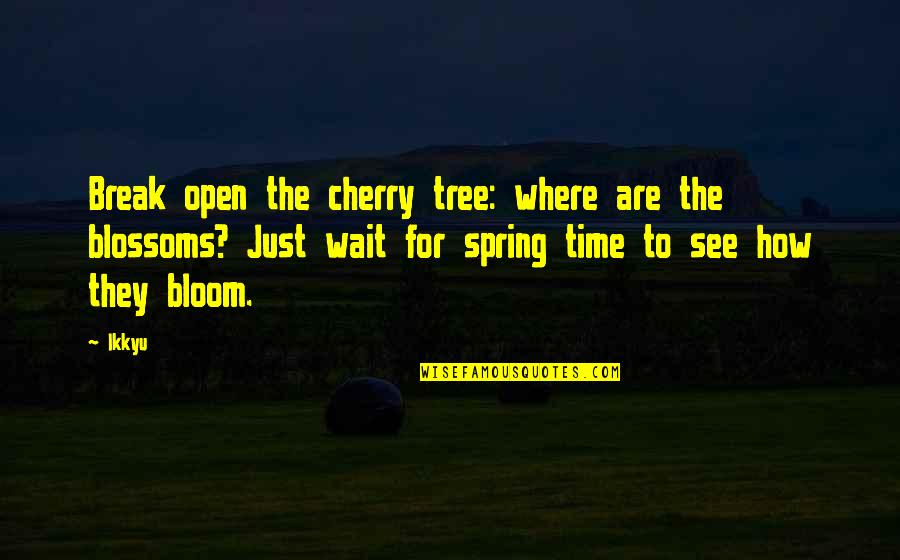 Cherry Tree Quotes By Ikkyu: Break open the cherry tree: where are the