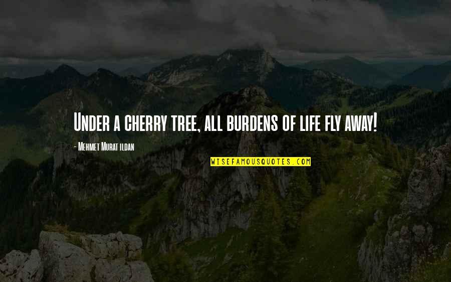 Cherry Tree Quotes By Mehmet Murat Ildan: Under a cherry tree, all burdens of life
