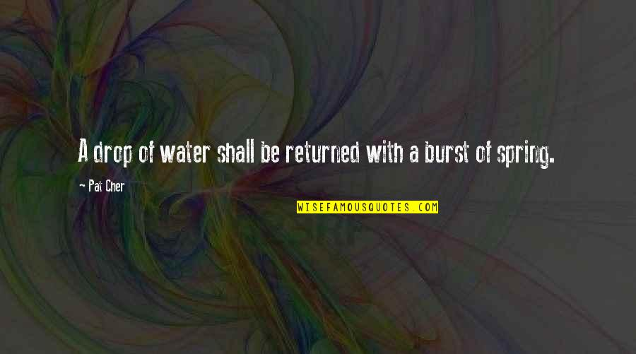 Cher's Quotes By Pat Cher: A drop of water shall be returned with