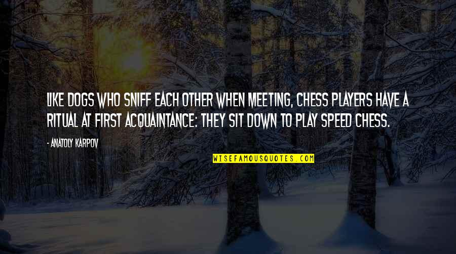 Chess Player Quotes By Anatoly Karpov: Like dogs who sniff each other when meeting,