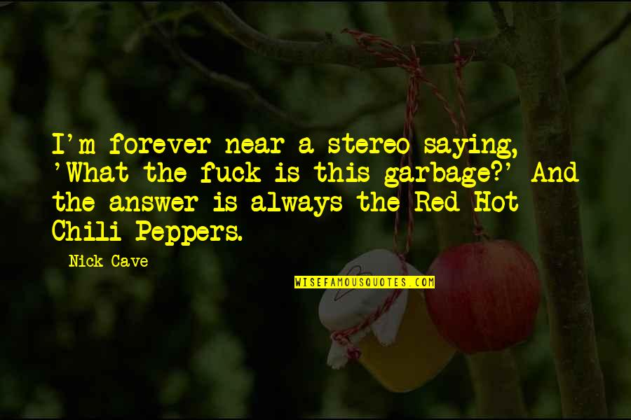 Chili's Quotes By Nick Cave: I'm forever near a stereo saying, 'What the
