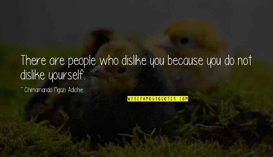 Chimamanda Adichie Love Quotes By Chimamanda Ngozi Adichie: There are people who dislike you because you