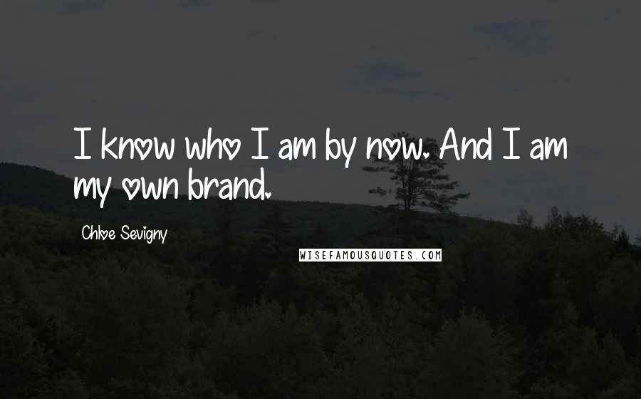 Chloe Sevigny quotes: I know who I am by now. And I am my own brand.
