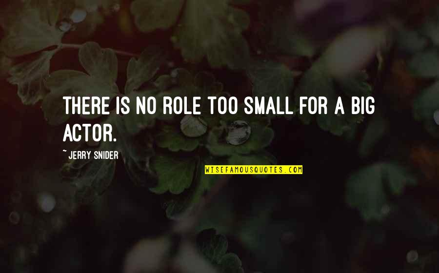 Chocolate And Christmas Quotes By Jerry Snider: There is no role too small for a