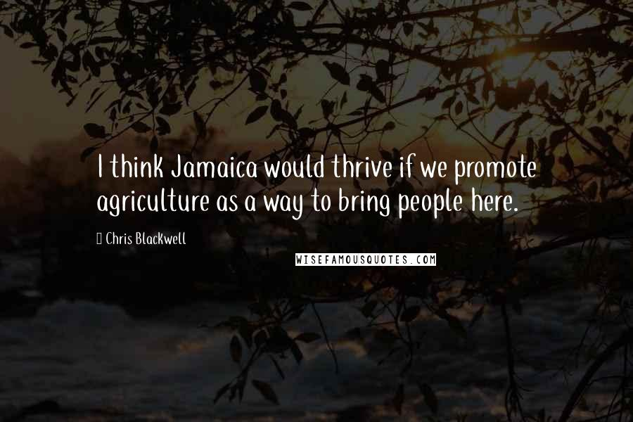 Chris Blackwell quotes: I think Jamaica would thrive if we promote agriculture as a way to bring people here.
