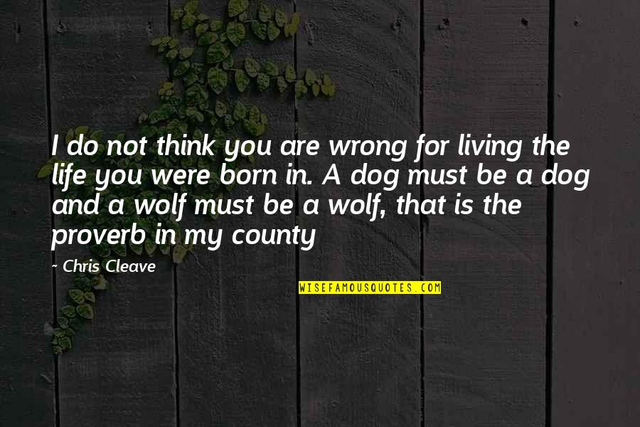 Chris Cleave Quotes By Chris Cleave: I do not think you are wrong for
