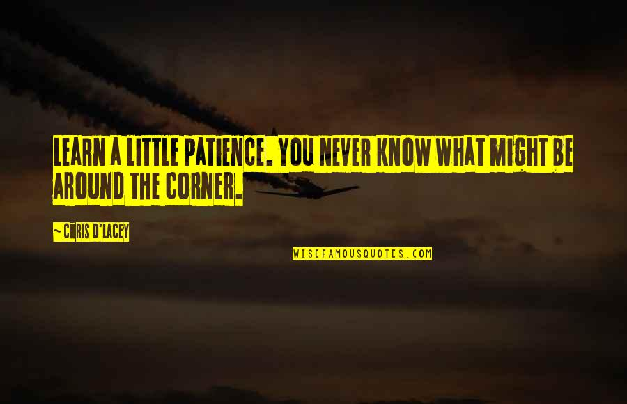 Chris D'elia Quotes By Chris D'Lacey: Learn a little patience. You never know what
