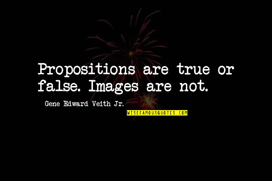 Chris Hondros Quotes By Gene Edward Veith Jr.: Propositions are true or false. Images are not.