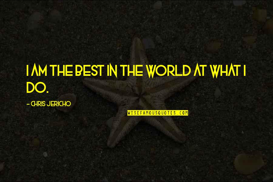 Chris Jericho Quotes By Chris Jericho: I am the best in the world at