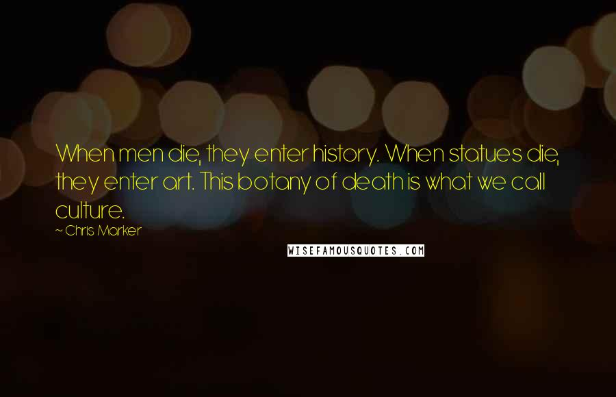 Chris Marker quotes: When men die, they enter history. When statues die, they enter art. This botany of death is what we call culture.