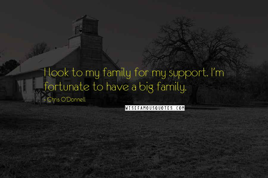 Chris O'Donnell quotes: I look to my family for my support. I'm fortunate to have a big family.