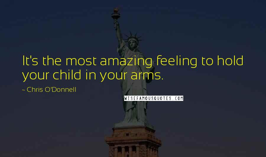 Chris O'Donnell quotes: It's the most amazing feeling to hold your child in your arms.