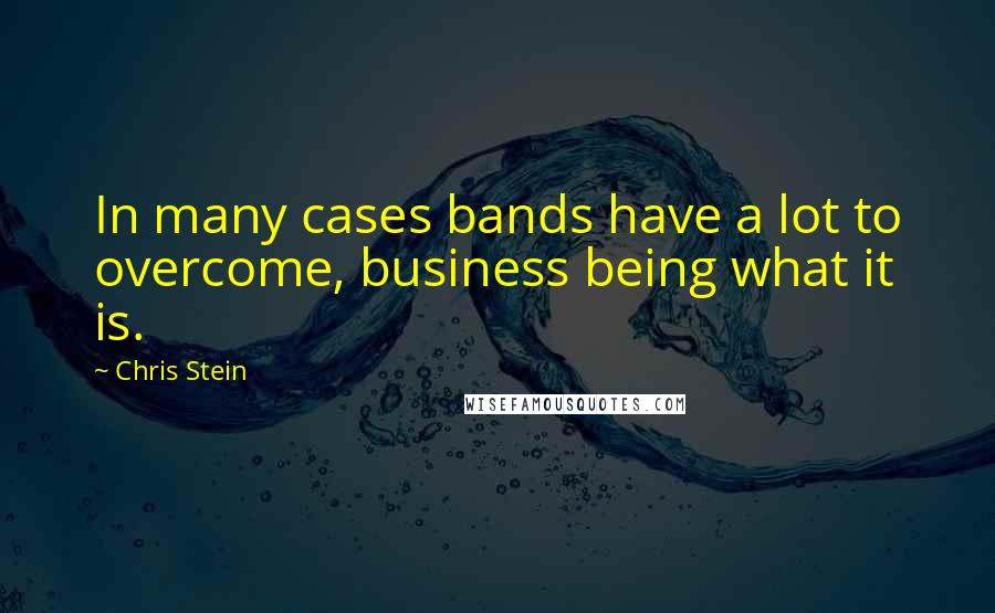 Chris Stein quotes: In many cases bands have a lot to overcome, business being what it is.