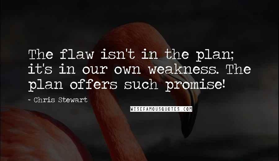 Chris Stewart quotes: The flaw isn't in the plan; it's in our own weakness. The plan offers such promise!