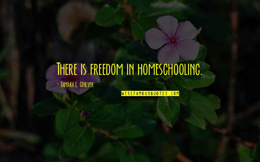 Christian Homeschool Quotes By Tamara L. Chilver: There is freedom in homeschooling.