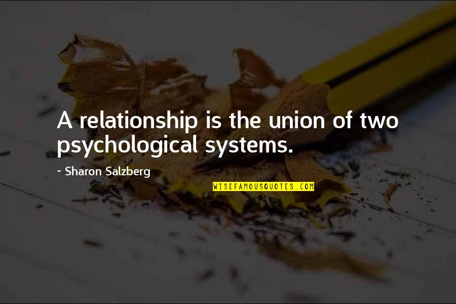 Christian Maternity Quotes By Sharon Salzberg: A relationship is the union of two psychological