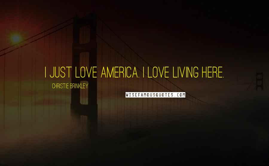 Christie Brinkley quotes: I just love America. I love living here.
