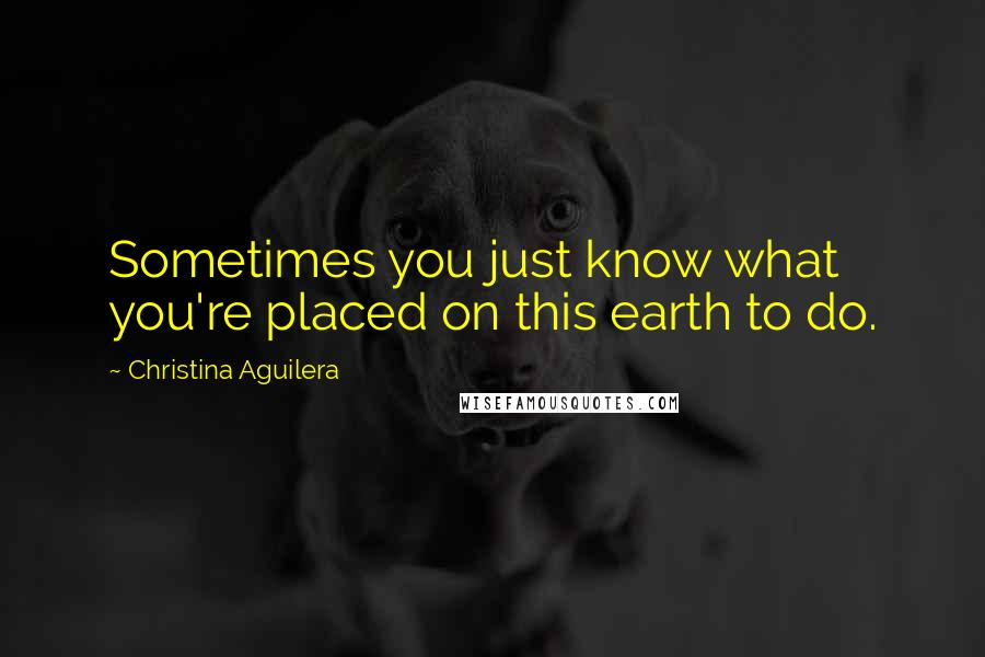 Christina Aguilera quotes: Sometimes you just know what you're placed on this earth to do.