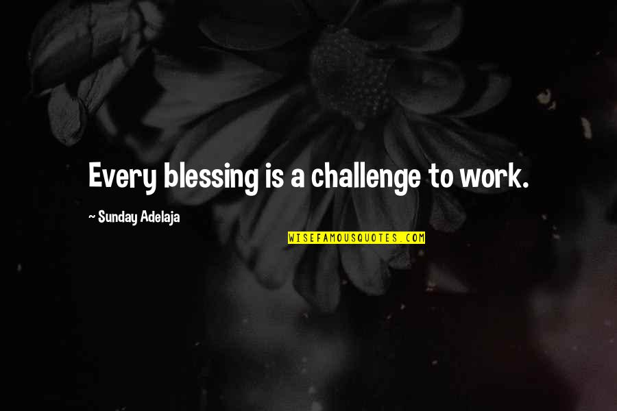 Christmas Cactus Quotes By Sunday Adelaja: Every blessing is a challenge to work.