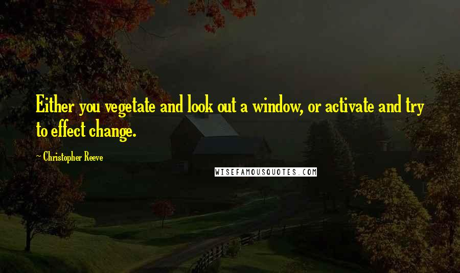 Christopher Reeve quotes: Either you vegetate and look out a window, or activate and try to effect change.
