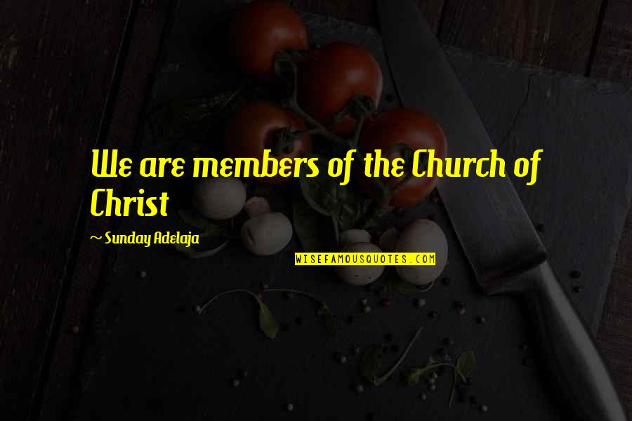 Church Of Christ Quotes By Sunday Adelaja: We are members of the Church of Christ