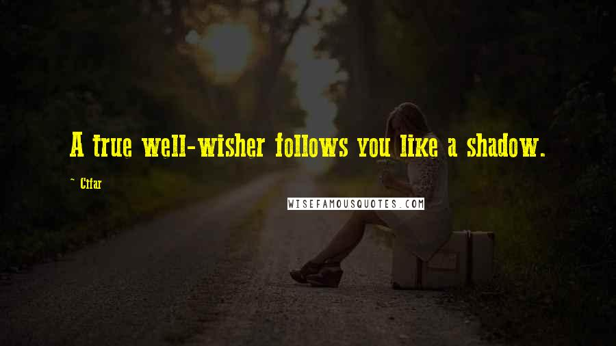 Cifar quotes: A true well-wisher follows you like a shadow.