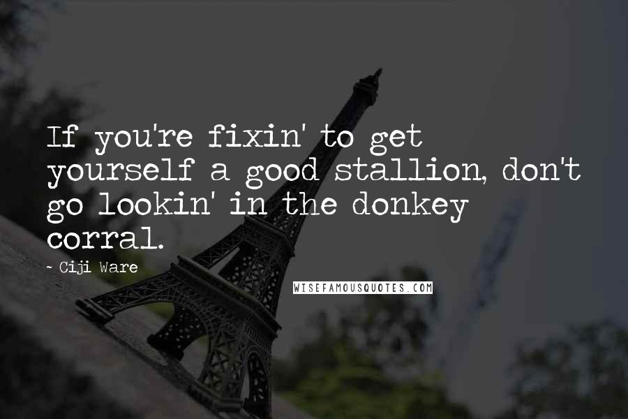 Ciji Ware quotes: If you're fixin' to get yourself a good stallion, don't go lookin' in the donkey corral.