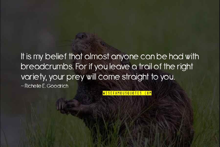 Circumstantially Quotes By Richelle E. Goodrich: It is my belief that almost anyone can