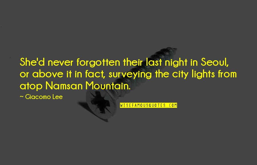 City Lights At Night Quotes By Giacomo Lee: She'd never forgotten their last night in Seoul,