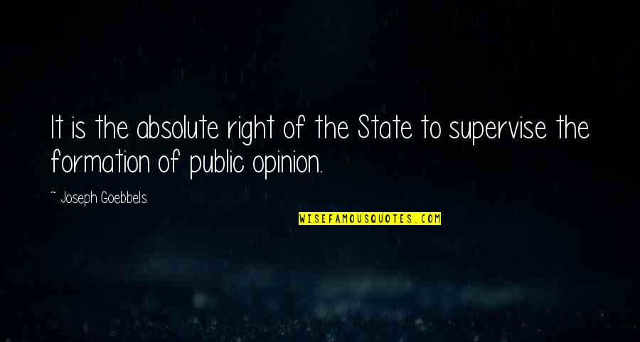 City Of Ashes Movie Quotes By Joseph Goebbels: It is the absolute right of the State