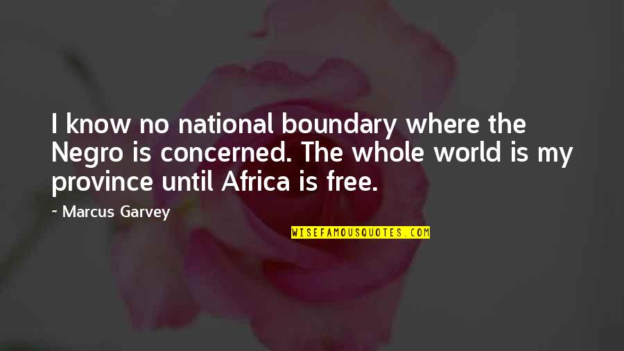 Civil Society Organisations Quotes By Marcus Garvey: I know no national boundary where the Negro