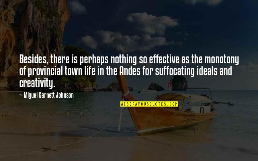 Civil Society Organisations Quotes By Miguel Garnett Johnson: Besides, there is perhaps nothing so effective as