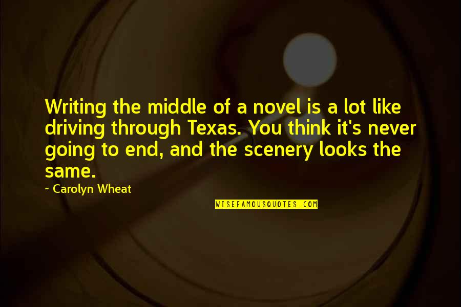 Civilization 3 Technology Quotes By Carolyn Wheat: Writing the middle of a novel is a