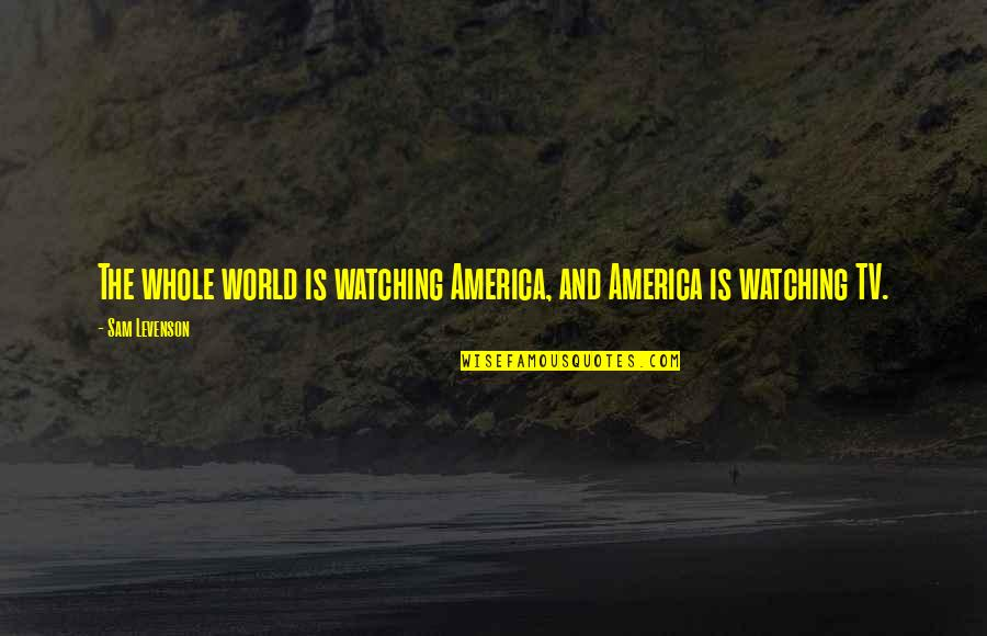 Clashing Realities Quotes By Sam Levenson: The whole world is watching America, and America
