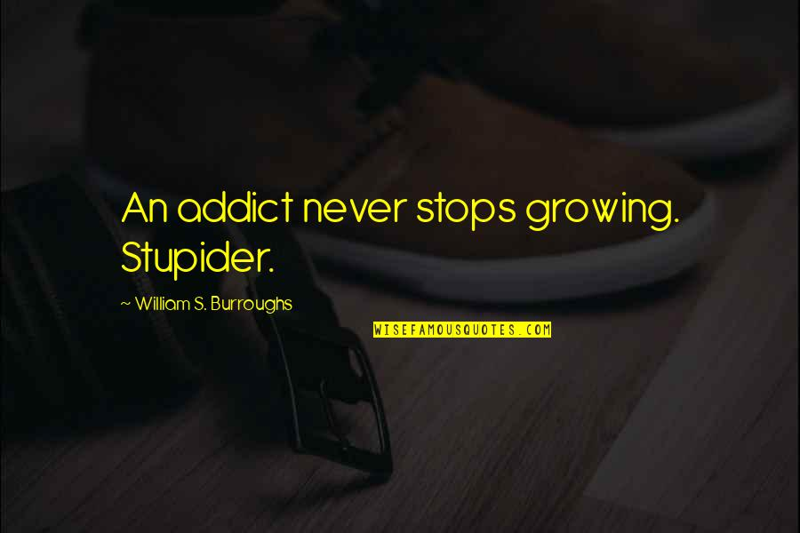 Clashing Realities Quotes By William S. Burroughs: An addict never stops growing. Stupider.