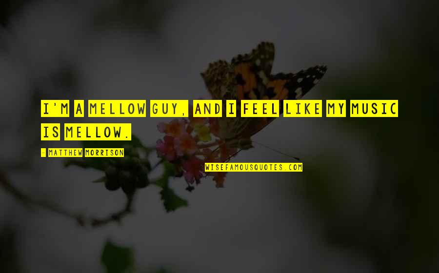 Claudio Pizarro Quotes By Matthew Morrison: I'm a mellow guy, and I feel like