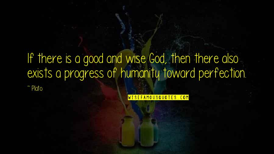 Claustra Quotes By Plato: If there is a good and wise God,