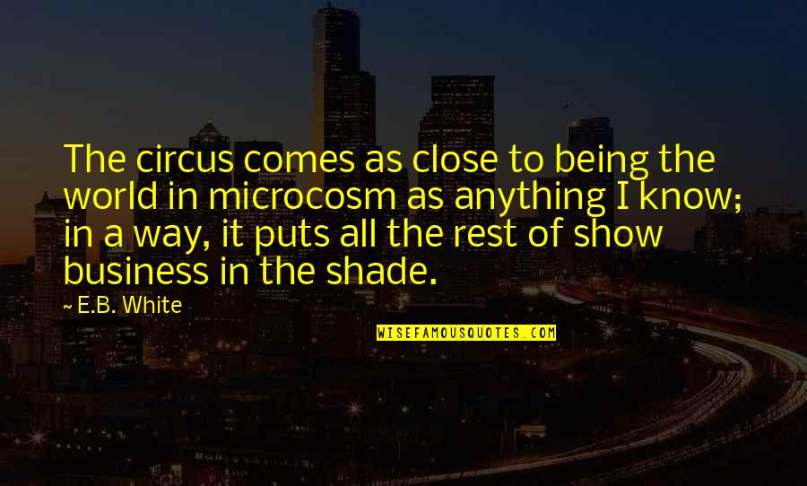 Clean And Green Environment Quotes By E.B. White: The circus comes as close to being the