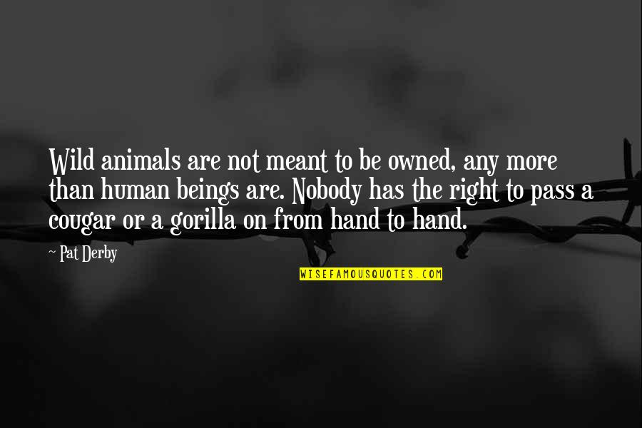 Clean India Gandhi Quotes By Pat Derby: Wild animals are not meant to be owned,