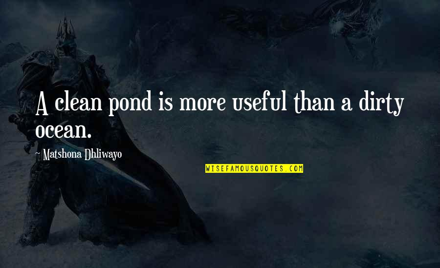 Clean Quotes And Quotes By Matshona Dhliwayo: A clean pond is more useful than a