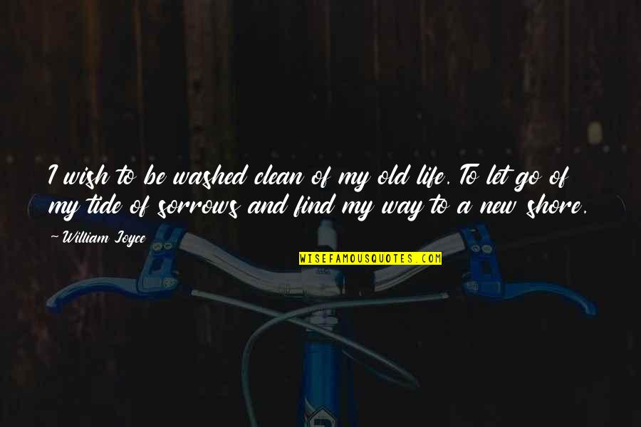 Clean Your Life Quotes By William Joyce: I wish to be washed clean of my